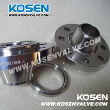 API Stainless Steel Rtj Flanged