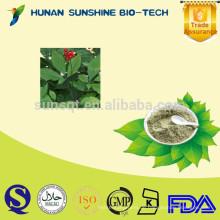 Pharmaceutical Grade Nahrungsergänzung Panax Ginseng-Blatt-Extrakt Ginsenosides Pulver