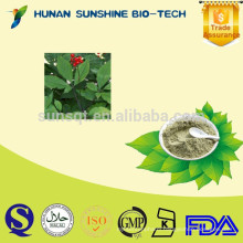 Pharmaceutical Grade Nutritional Supplements Panax Ginseng Leaf Extract Ginsenosides Powder