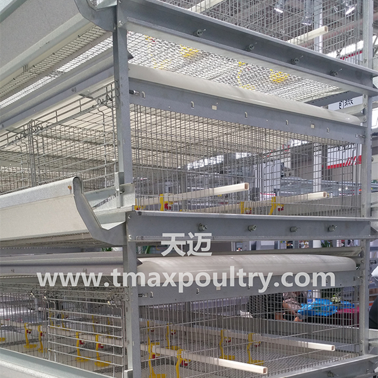 Broiler cage system