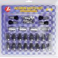 20+1 PCS/Set Wheel Lock Nut with Double Blister Package for Auto Parts