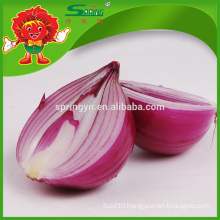 Wholesale fresh red onion price for dehydrated onion