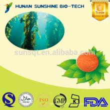 El fabricante de ISO & GMP suministra 10% de polvo de extracto de quelpoxina y fucoxantina