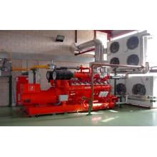 Green Energy Biokraftstoff Biogas Generator Set