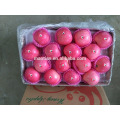 Blush Fuji maçãs grandes tamanhos