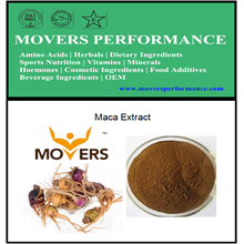 Natural and Organic Herb Extract: Maca Extract