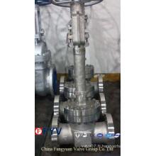 API 6D / 598 Vanne de porte cryogénique en acier moulé
