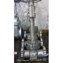 API 6D/598 Cast Steel Cryogenic Gate Valve