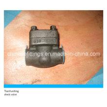 ANSI кованый стальной поршневой резьбовой обратный клапан