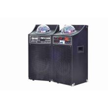2.0 Active Professional Speaker 6007