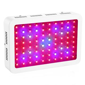 80X10W LED Chip 800W LED Grow Lights