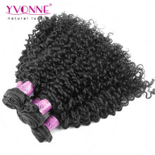 Wholesale Grade 7A Malaysian Curly Brazilian Virgin Hair