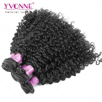 Wholesale Grade 7A Malaysian Curly Brazilian Virgin Hair
