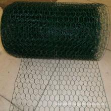 Galvanized Chicken Wire Mesh for Domestic Fowl