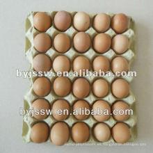 Caja de cartón de huevos de pulpa
