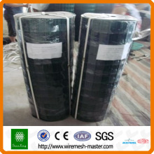stainless steel wire welded mesh
