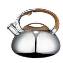 2.5L turquoise tea kettle