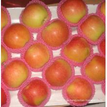 2015 China-Qualitäts-frischer roter Stern Apple