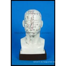 Life-Size Akupunktur Kopf Modell (M-2-20)