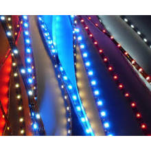 2835SMD LED Strip LED Strip Light LED Light