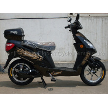 Electric Bike (E-001)