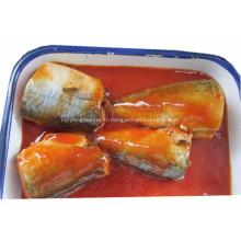 Maquereau en conserve à la sauce tomate