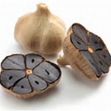 FDA และ HACCP Liliaceous Type Black Garlic