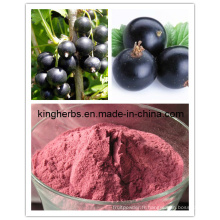 Extrait de groseille noire / huile de groseille No CAS: 68606-81-5