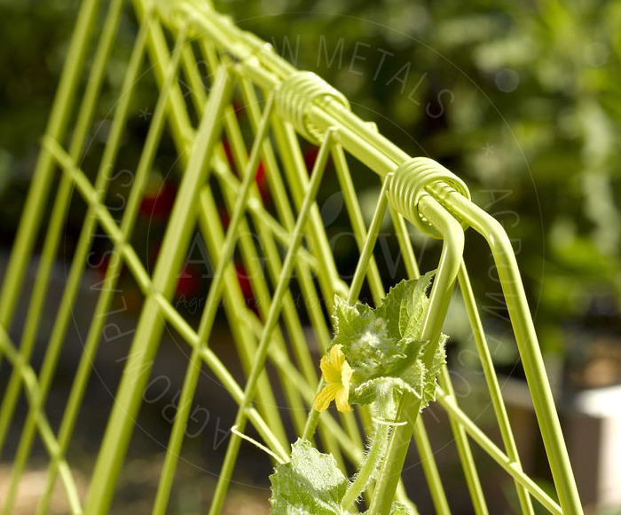 Trellises for vine crops