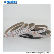 SMD5050 RGBW LED Strip Usando no dia de Natal