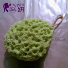 Aloes Bath Sponge