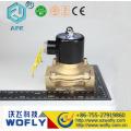 2/2 électrolyse directe 2w-250-25 électrovanne 220v ac 1 pouce