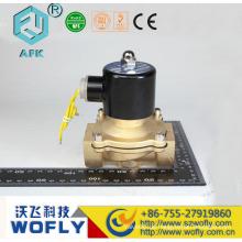2/2 direkt actign 2w-250-25 Wasser-Magnetventil 220v ac 1 Zoll