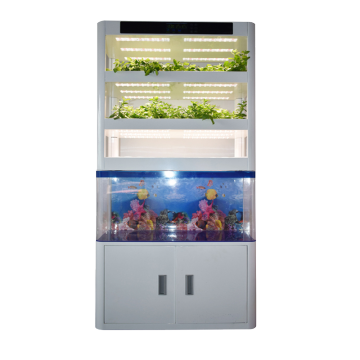 Skyplant Vertical Indoor Garden Smart Home Grow System Macchina per orticoltura