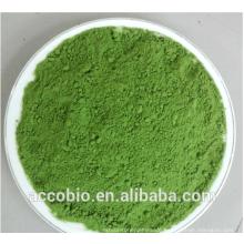 Weizen-Gras-Saft-Pulver, organisches Weizen-Gras-Pulver, Weizen-Gras-Pulver