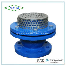 Gray Cast Iron Flange End Foot Valve