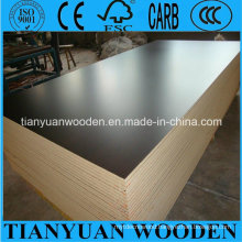 12mm Film Faced Plywood Eucalyptus Plywood