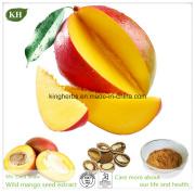 Wild Mango Seed Extract / 20: 1 Irvingia Gabonensis Extract