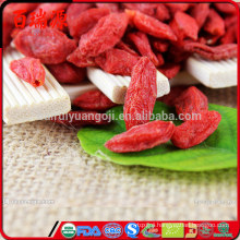 Good quality Goji berry as union subotica goji berry at walmart goji berry amazon Without any additives