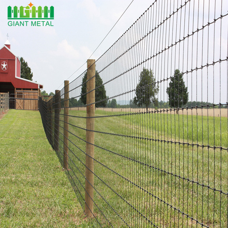 PVC Coated Metal Livestock Farm Fence Panel