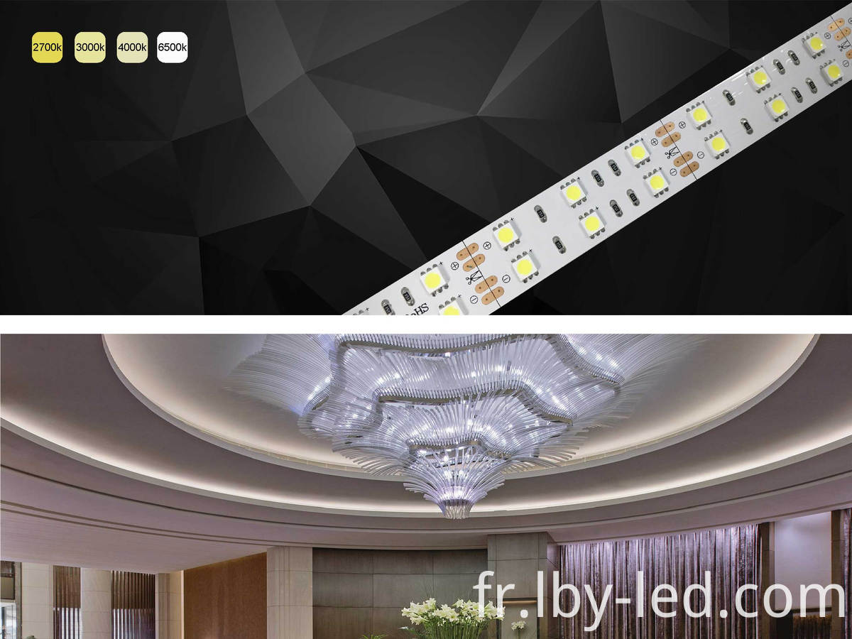 DC24V two row LED strip light