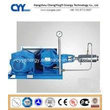 Cyyp 58 Uninterrupted Service Large Flow and High Pressure LNG Liquid Oxygen Nitrogen Argon Multiseriate Piston Pump
