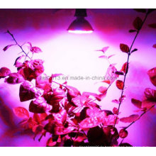 80LED AC110 / 220V 4W Bleu: Rouge = 64: 16 Hydroponique Grow Light