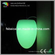 Lampe de plafond décorative LED (BCD-339L)