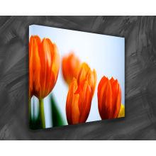 100% Poliéster Inkjet Canvas Print Pintura a óleo da flor
