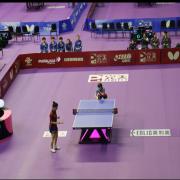 Professionele indoor tafel tennisbaan matten