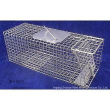 Jaula doblada del colector del gato salvaje del metal para atrapar