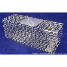 Folded Metal Wild Cat Catcher Cage for Trapping