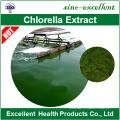 High Quality Organic Chlorella and Spirulina Powder