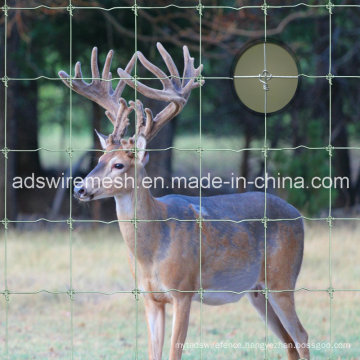 Fixed Knot Fence/Game Fence/Deer Fence/Horse Fence/Goat Fence